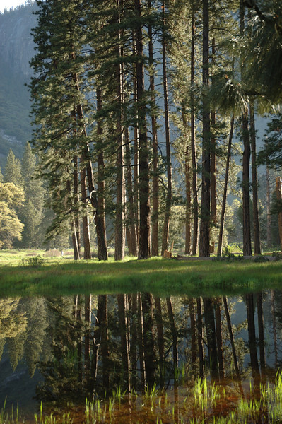 Yosemite-047