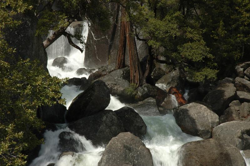 Yosemite-072