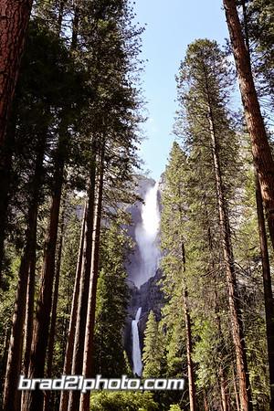 Yosemite2016-98