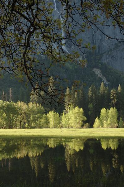 Yosemite-107