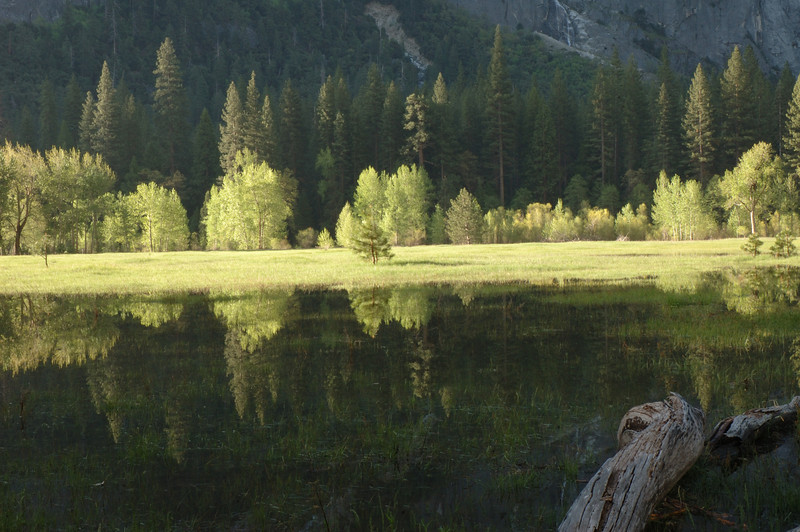 Yosemite-113