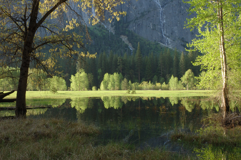 Yosemite-116