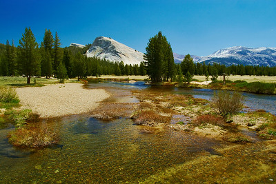 """Tuolumne Meadows & Lembert Dome"""
