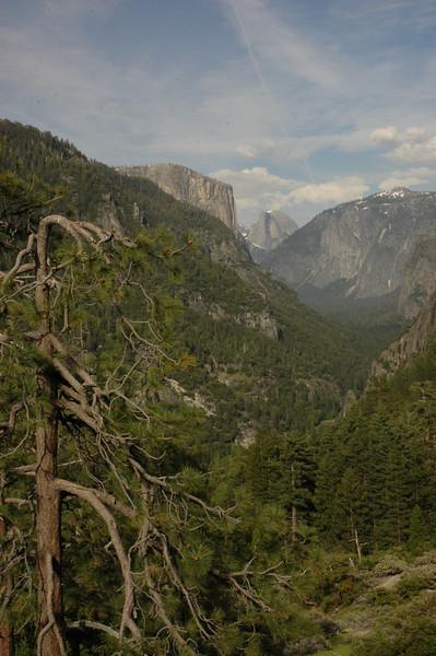 Yosemite-146
