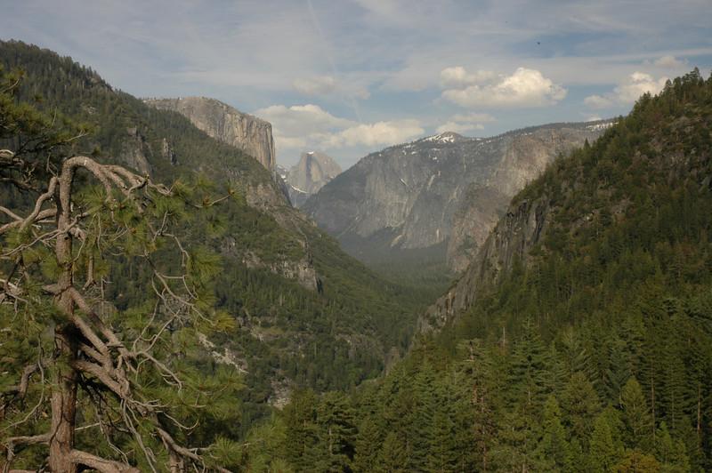 Yosemite-145
