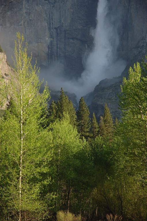 Yosemite-043