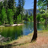 View Along Merced River