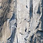 Climbing El Capitan DSC_5633