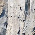 Climbing El Capitan DSC_5626
