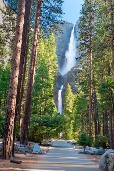 Yosemite Falls in Summer