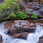 Cascades-Creek-Waterfall-Flowing-in-Yosemite-Summer-Spring_DSC1047v2 sRBG