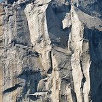 Climbing El Capitan DSC_5632