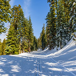 """Cross Country Skiing along the Glacier Point Road in Yosemite National Park"""