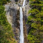 Lower Yosemite Falls in Spring