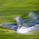 """Summer Flowing on the Merced"" DSC_5754"