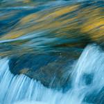 Green and Golden Flows_D3X9610