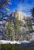 California, Yosemite National Park, El Capitan, California, Winter, Snow Landscape 加利福尼亚  优胜美地国家公园 冬 风景