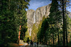 Yosemite Falls from second trail.
