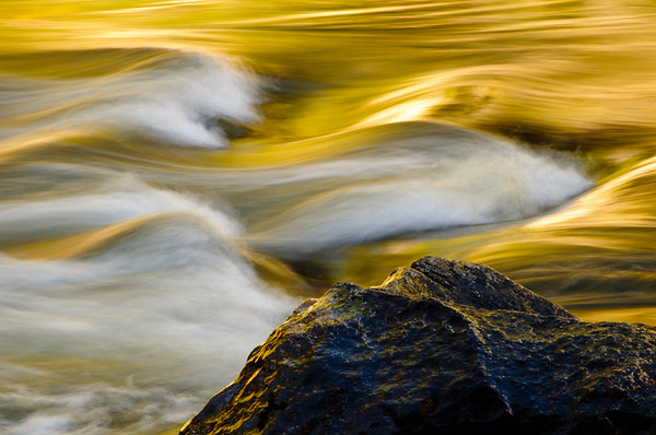 Merced River Flowing Gold