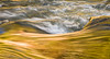 Golden Rushing Water - Merced River