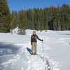 Snowshoeing near Crane Flat