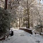 Winter Yosemite Bridge -0045