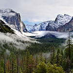 """Tunnel View Panorama in Yosemite National Park in Winter"" Just a beautiful scene in Yosemite National Park up at Tunnel View overlooking El Capitan and Bridal Veil Falls. The fog was swirling around in the valley below like water in bathtub being stirred up! It was swirling from one side to another and then coming up to obscure the view so we couldn't even see anything! I captured a timelapse of this wonder and I'll post it at another time. Please contact me for ordering this print directly so it isn't cropped. This is a 1:2 ratio panorama that I print myself - a 20"" x 40"" inch or larger is great! Offered also in 24"" x 48"", 30"" x 60"" and 40"" x 80"". You can also consider getting this in a 3 Image triptych with one large image and then two smaller side images.""Tunnel View Panorama in Yosemite National Park in Winter"".  I went up for sunrise to shoot from Tunnel View in Yosemite and caught the fog throughout the valley.  When we arrived it was nice and clear like this, but 5 minutes later the fog obscured our view and we couldn't see ANYTHING!  It would clear up and then fog over again. I'll share the timelapse that I captured and you can see the fog swirling around the valley like a bathtub!  It is amazing how different the valley can look even in the span of 5 minutes.  Time to make this my Timeline picture."