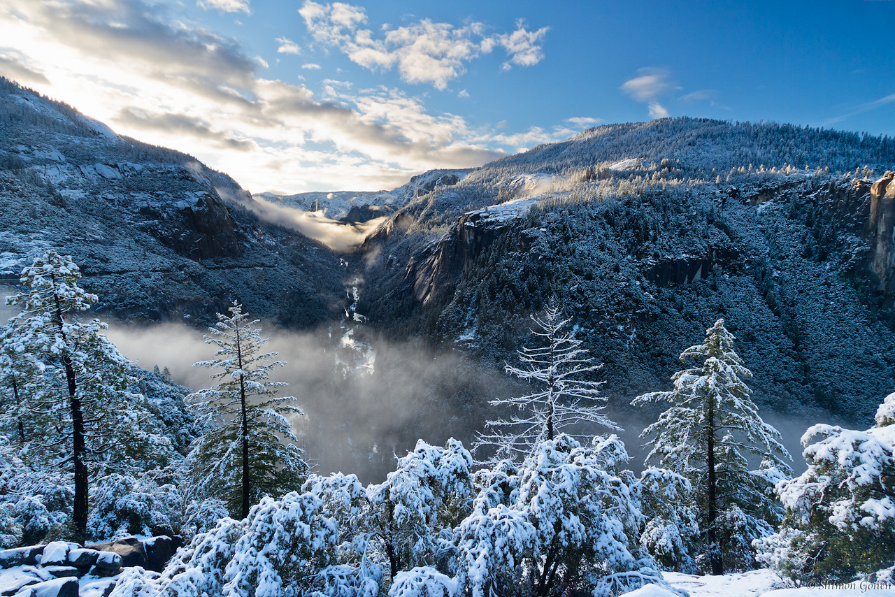 Morning after snow storm - Yosemite