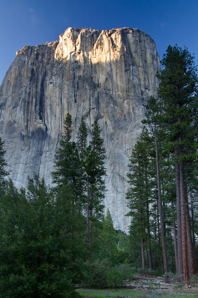 El Capitan at sunset - Yosemite