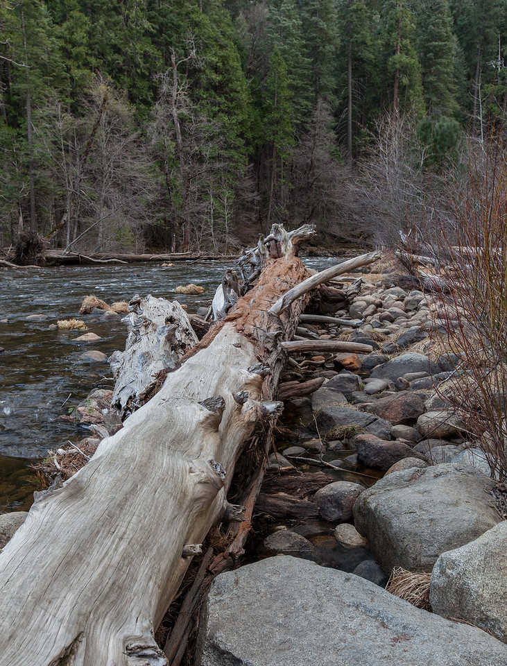 Merced River at Valley View