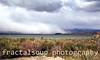 Spring Snow Storm on Lake Mono