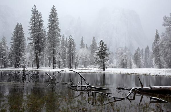 Yosemite Meadow In Winter