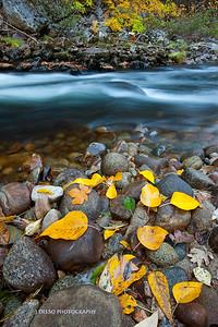 Yosemite-9574