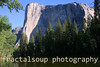 El Capitan Framed by Evergreens above the Merced River