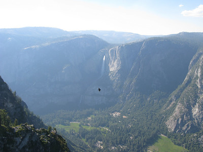 Hawk? Eagle? Condor? From Glacier Point