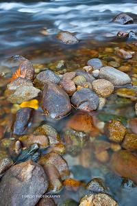 Yosemite-9572
