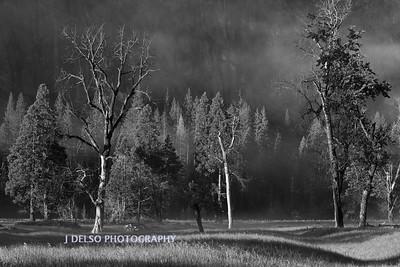 Yosemite-5550-Edit