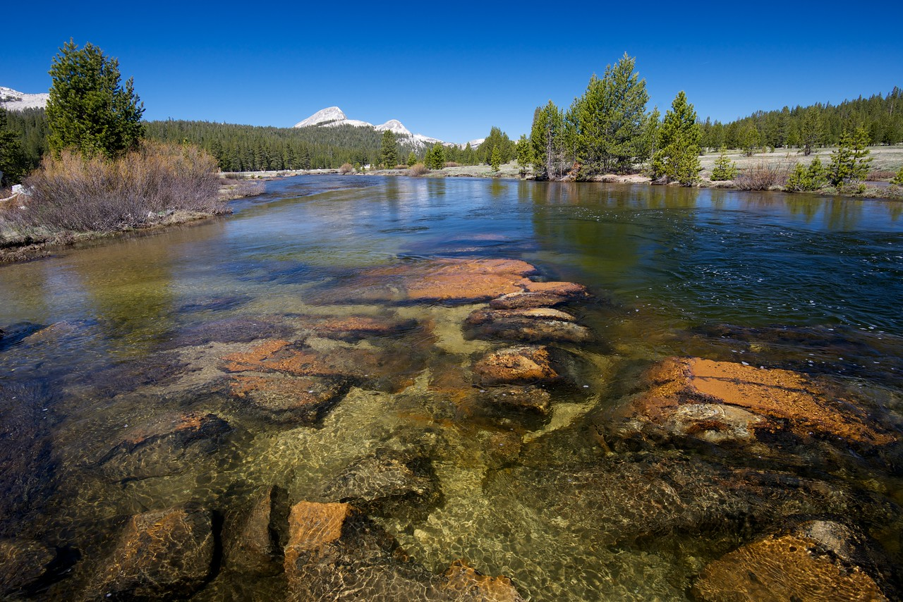 Tuolumne River, Tuolumne Meadows, Yosemite National Park