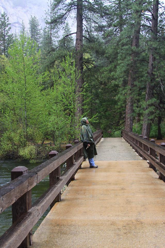 admiring the view. Bridge at housekeeping camp
