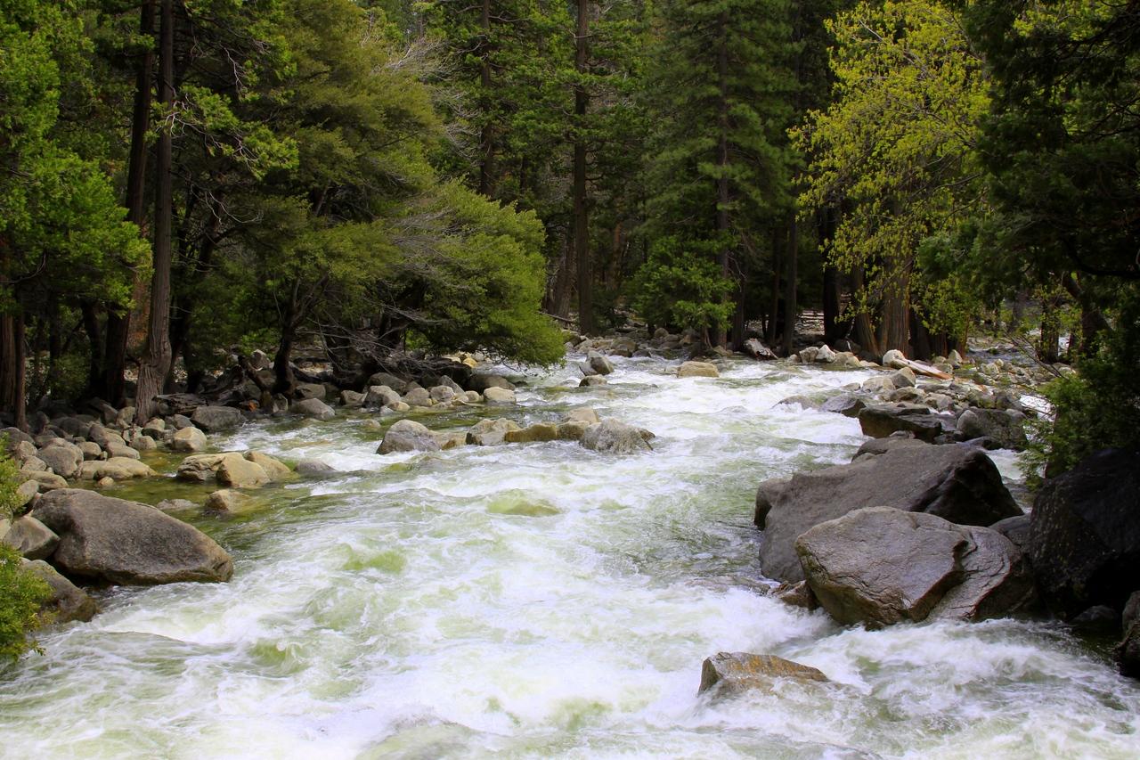 yosemite, river from bridge yosemite falls