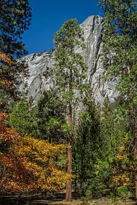 Yosemite Granite Cliff