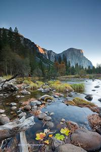 Yosemite-9561