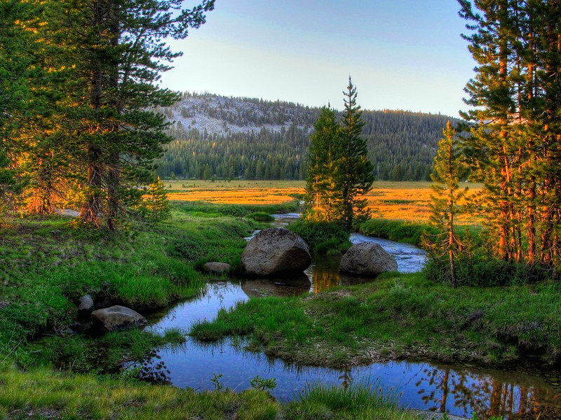Unicorn Creek, Tuolumne Meadows, Yosemite National Park, US