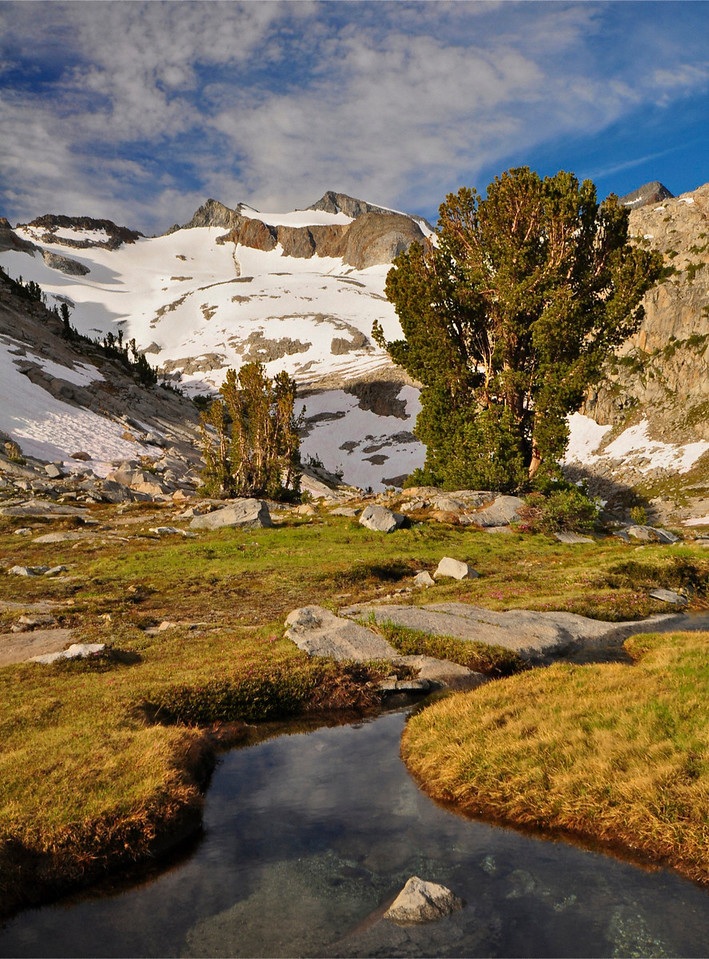 Mt. Lyell, Lyell Cirque, near Donohue Pass, Yosemite National Park