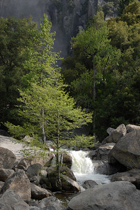 Run-off below falls after 2006 winter in Yosemite