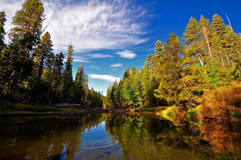 Merced River, Little Yosemite Valley, Yosemite National Park.