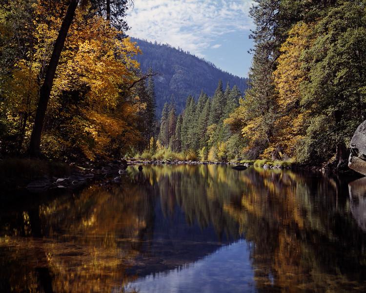 Yosemite Fall Colors along the Merced