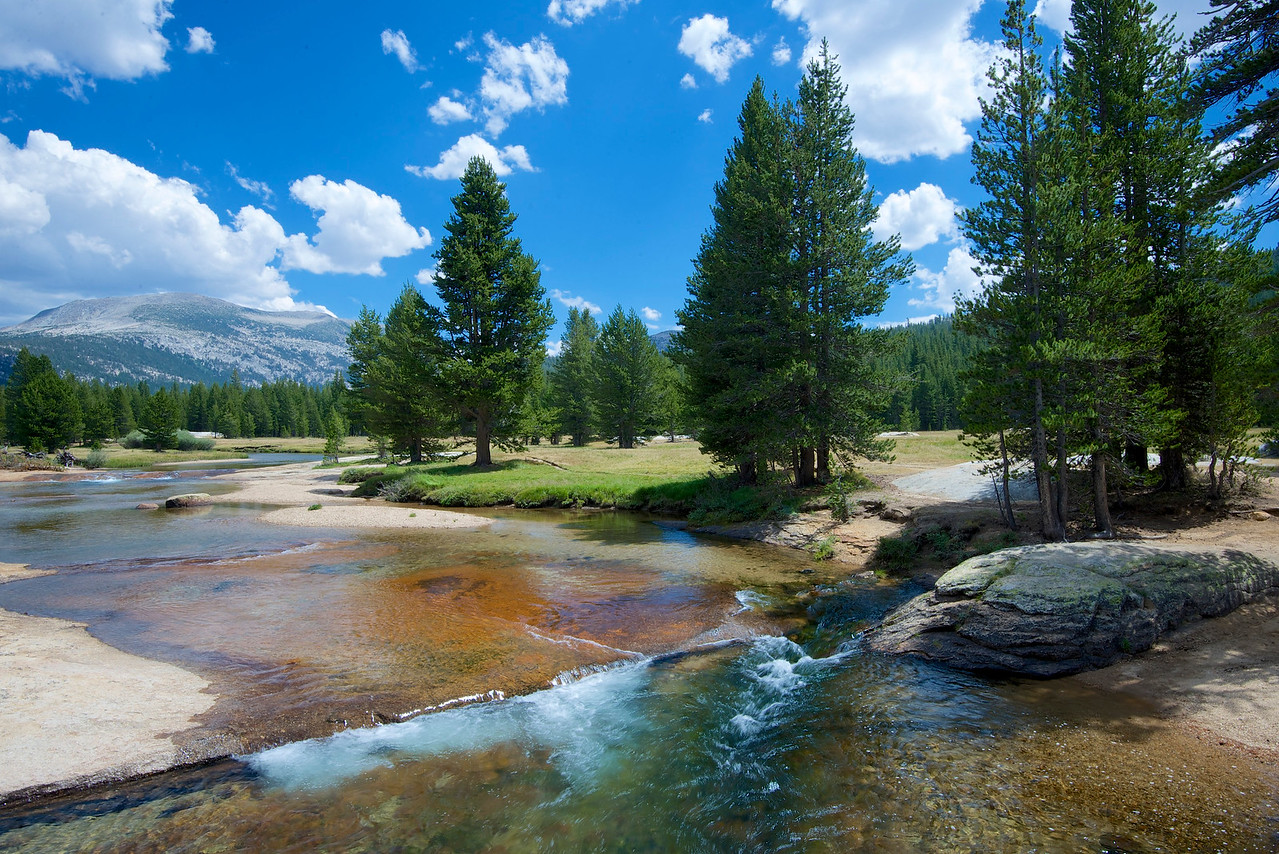 Tuolumne Meadows, Mammoth Peak, Yosemite National Park