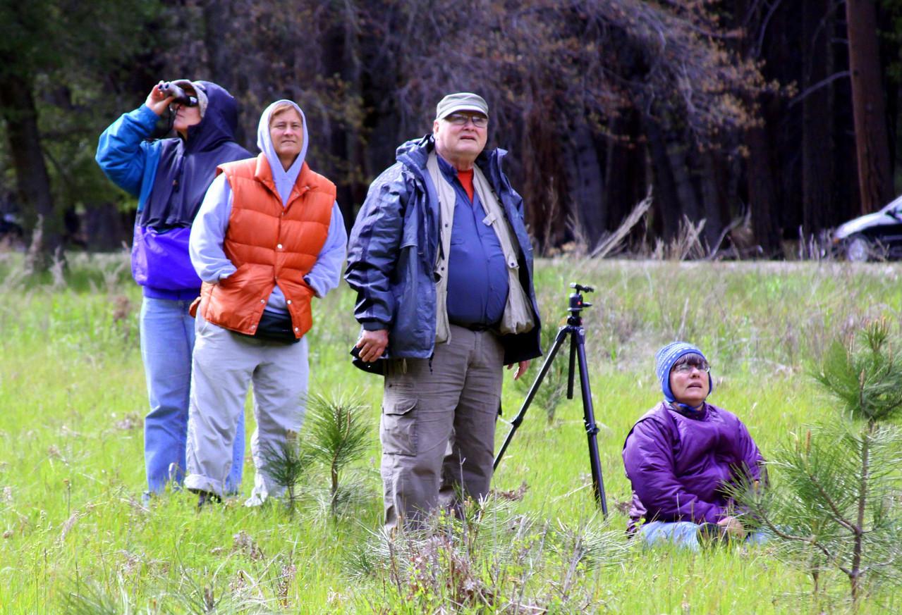 El Capitan meadow. landlubbers watching the climbers