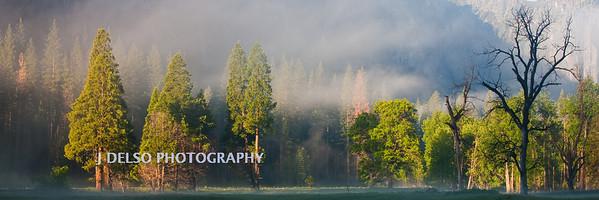 Yosemite-5539
